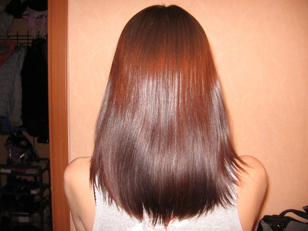 Хна и басма для волос пропорции для шоколадного цвета