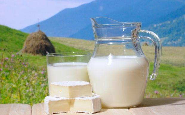 Толстеют ли от молока? Мнение диетологов