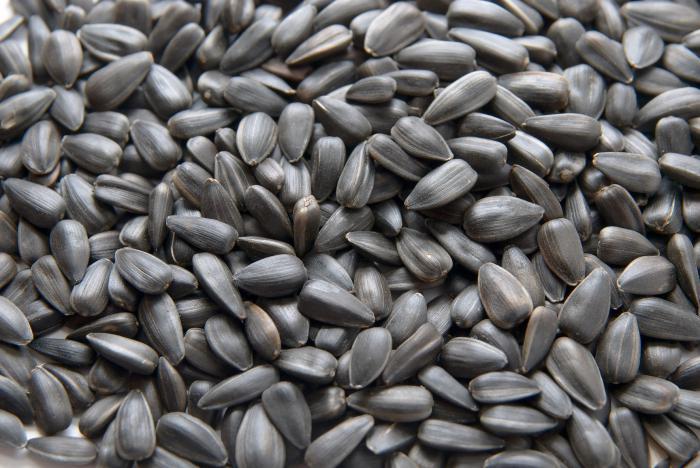 Можно ли набрать вес употребляя семечки